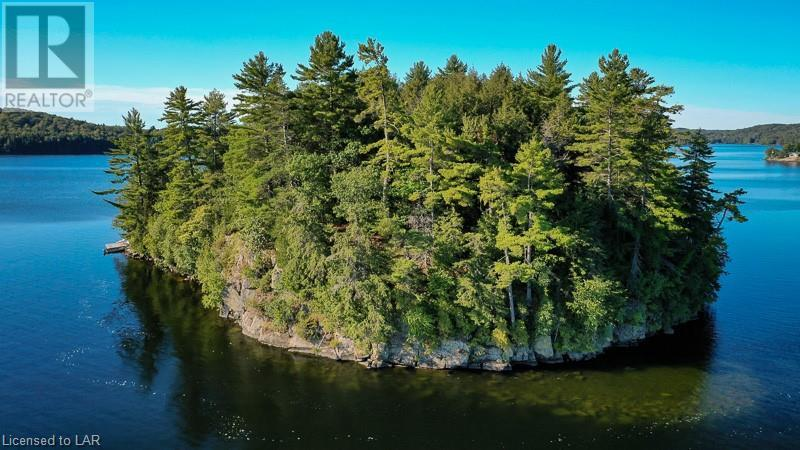 Island Life on Lake of Bays