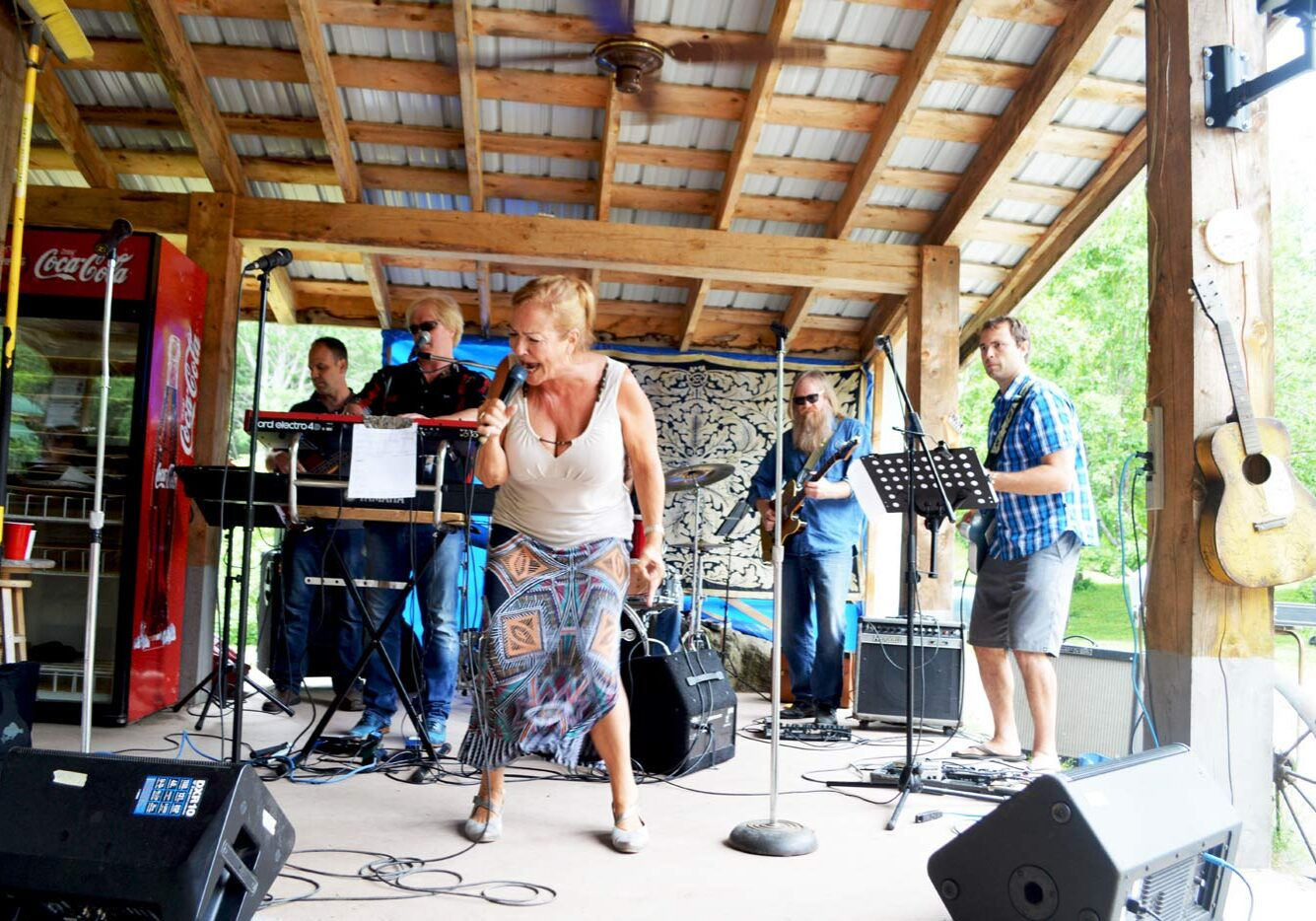 Etwell Concert Series performers blasting out the blues